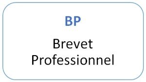 BREVETS PROFESSIONNELS : textes officiels