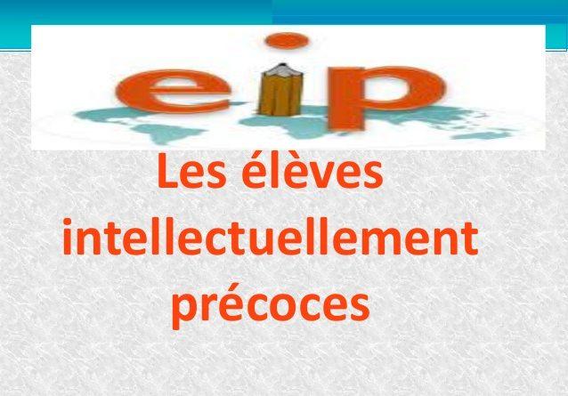 DES RESSOURCES POUR … mieux comprendre les Elèves Intellectuellement Précoces EIP – AUTEUR DRG