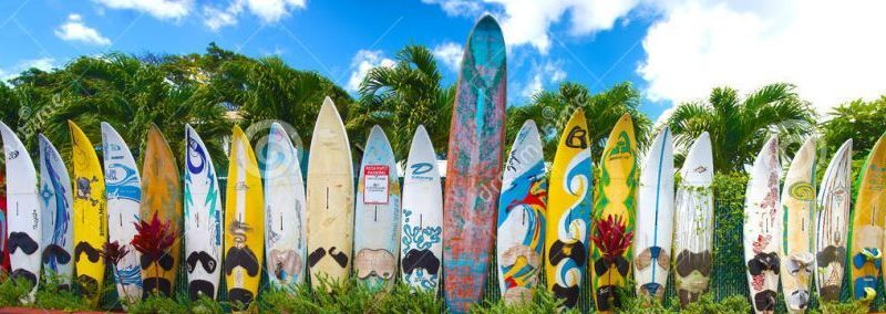 Ressources : Surfing beyond borders – Séquence du Bac Pro vers le BTS