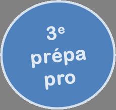 3prepapro