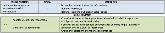 referentiel-tice53